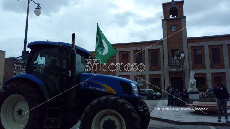 Emergenza cinghiali, gli agricoltori annunciano lo «sciopero del voto»