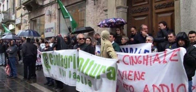 Emergenza cinghiali, la pioggia non ferma la protesta degli agricoltori – Video