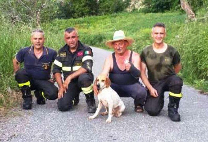 I vigili del fuoco col cane ritrovato ed il suo padrone