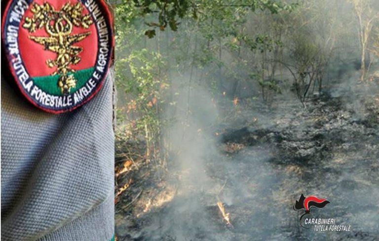 Mancata prevenzione degli incendi, sanzioni per 4.500 euro nel Vibonese