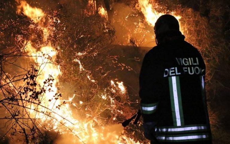 Capannone agricolo distrutto dalle fiamme, arsi vivi due vitelli