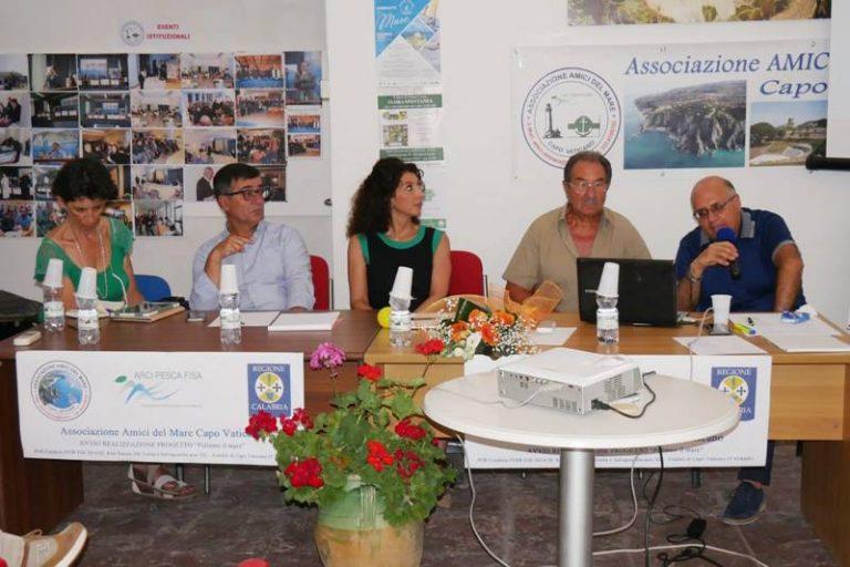 I fondali di Capo Vaticano scrigno di biodiversità, presentato il progetto di tutela – Video