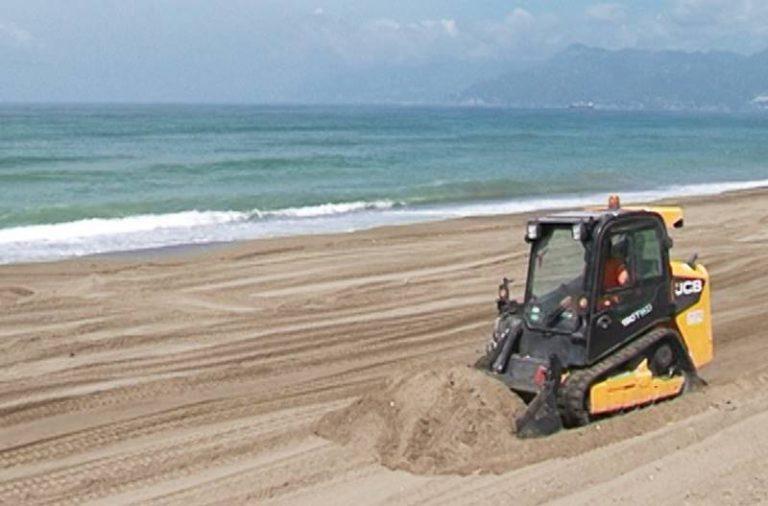 «Proteggiamo le spiagge delle tartarughe e del fratino»