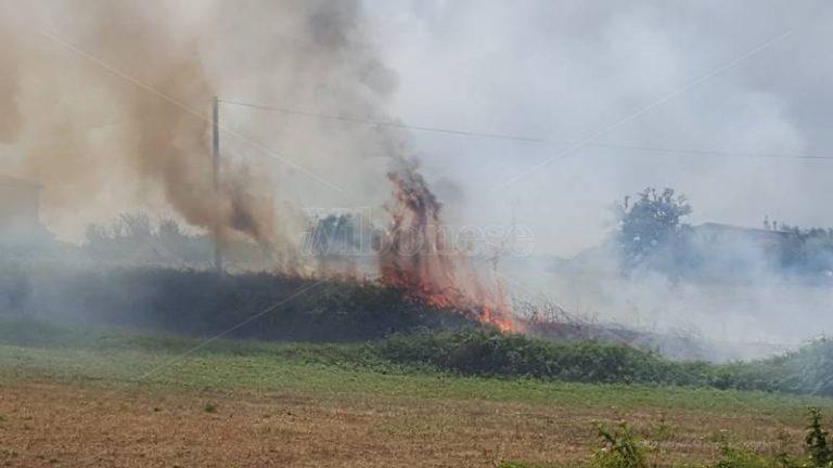 Sterpaglie in fiamme in contrada Bitonto a Vibo: il rogo a pochi metri dalle abitazioni – Video