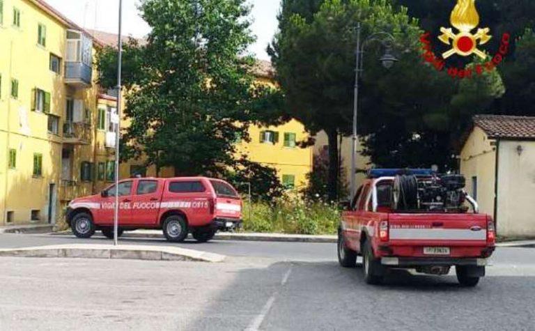 Incendi nel Siracusano, Vigili del fuoco vibonesi in soccorso dei colleghi siciliani