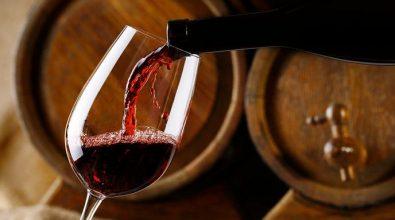 Per i vitivinicoltori calabresi arrivano 1,4 mln di euro: «Sostegno a settore di qualità»