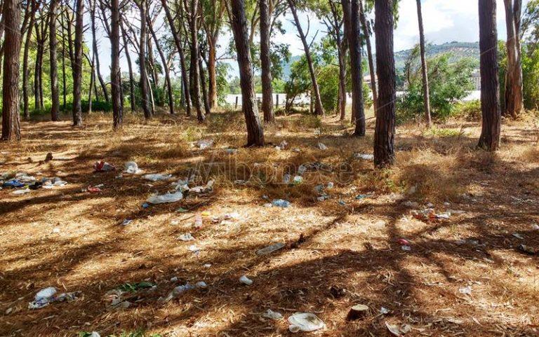 Viaggio a Colamaio dopo Ferragosto, distesa di rifiuti in pineta e sulla spiaggia – Video