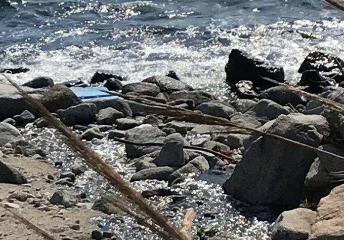 Il torrente la Morte a Joppolo
