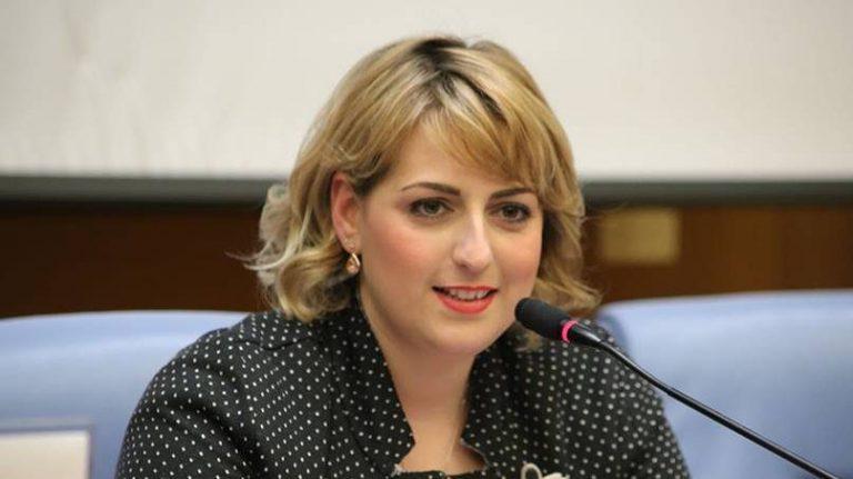 Sviluppo, il sottosegretario Nesci incontra i sindaci del Vibonese