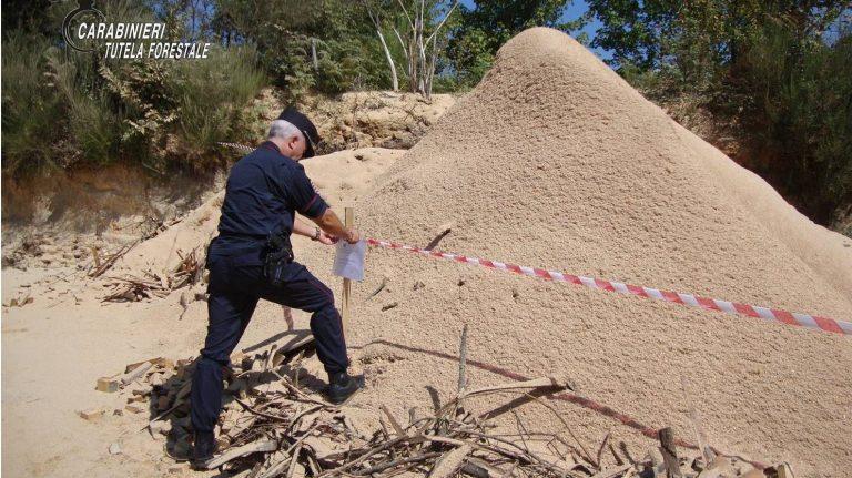 Controlli a tappeto dei carabinieri forestali nel Vibonese, denunce e sanzioni
