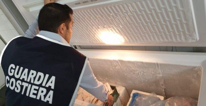 Guardia costiera di Vibo sequestra 35 chili di pesce nel Lametino