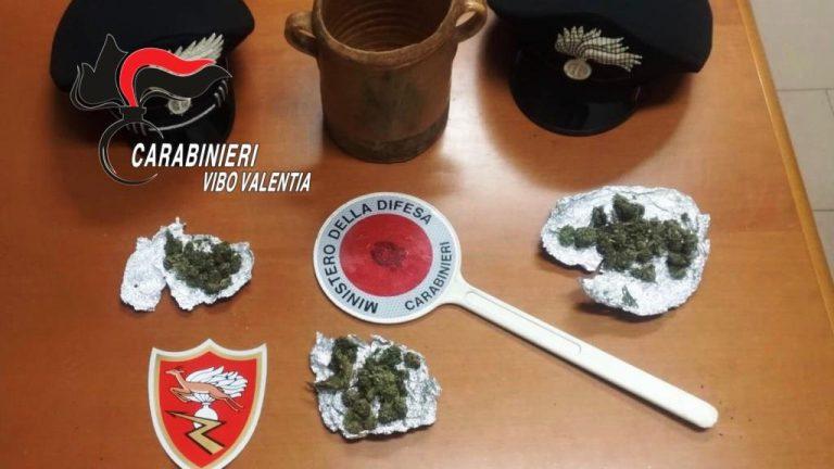 Spaccio di marijuana, i carabinieri arrestano un 22enne di Acquaro