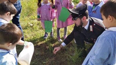Successo nelle scuole di Joppolo per la giornata degli alberi