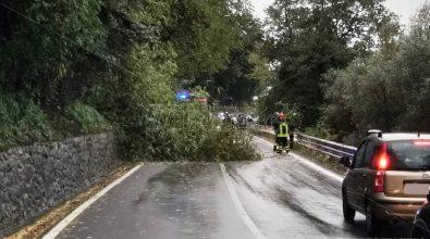 """Allerta rossa, a Vibo chiusi sottopassi e strade. Fossi e torrenti """"osservati speciali"""" – Video"""