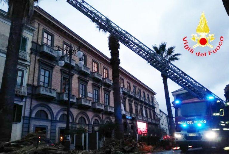 Rami pericolanti a Vibo in piazza Garibaldi, intervento dei vigili del fuoco