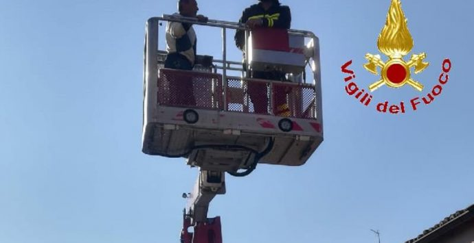 Salvato dai vigili del fuoco sul tetto di casa a Maierato