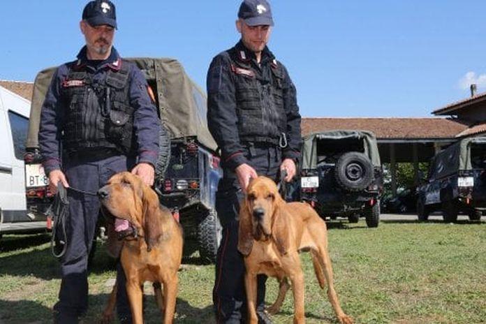 Scomparsa dei fratelli Mirabello, in campo cani molecolari e Cacciatori di Sardegna