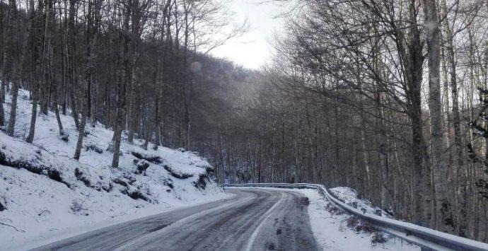 Temperature in picchiata, ecco la neve sulle Serre vibonesi – Foto