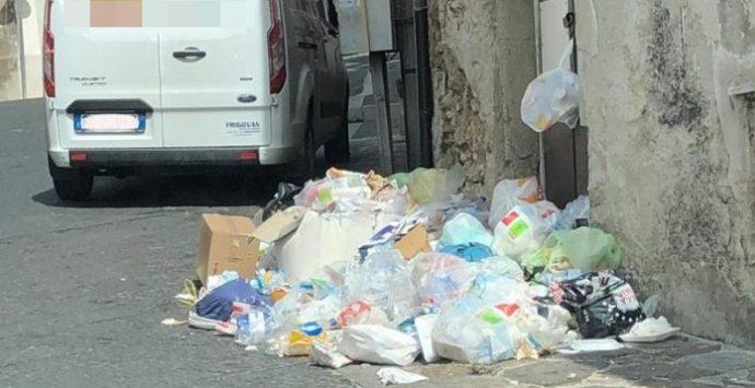 Cumuli di rifiuti in alcune vie di Vibo Valentia – Foto