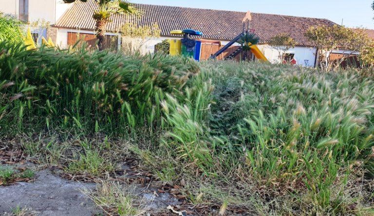 Bivona, spiagge sporche e piazzetta abbandonata: Patania chiede interventi
