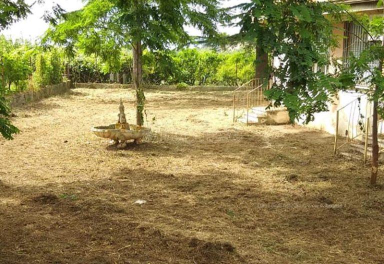 """""""Miracolo"""" a Ricadi: ripulita la zona attorno all'ex scuola di Lampazzone – Foto"""