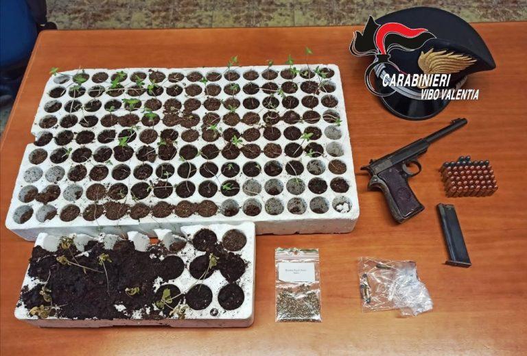 Armi, munizioni e marijuana: un arresto dei Carabinieri a Dinami