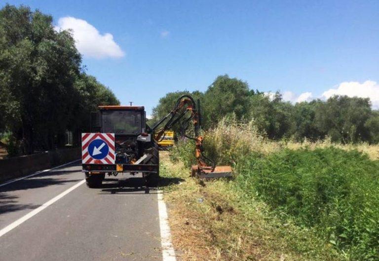Manutenzione del verde, operai Anas al lavoro sulle strade vibonesi