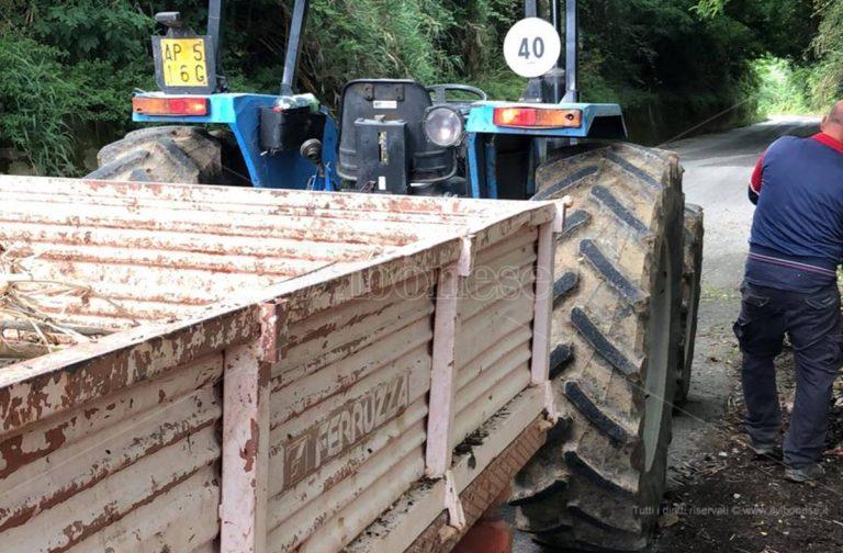 Degrado sulla Mileto-Dinami, gli ospiti del Maranathà ripuliscono la strada