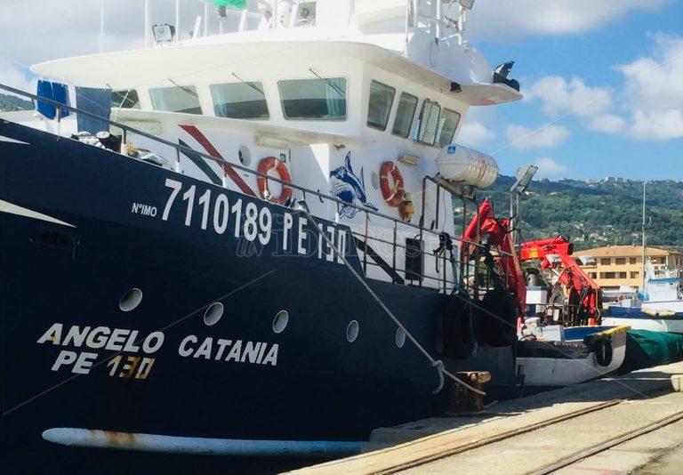 Pesca, a Vibo Marina è la stagione delle tonnare volanti