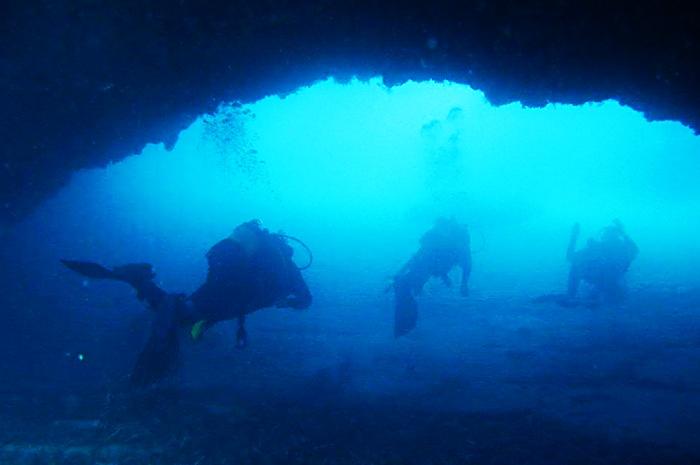Riaprono i diving center, i fondali di Briatico e Zambrone svelano i loro tesori – Video