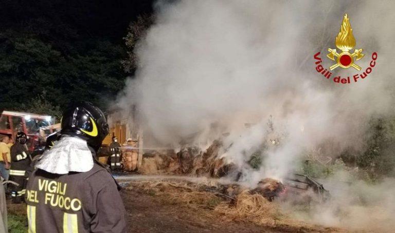 Incendio in una stalla ad Arena, vigili del fuoco salvano gli animali – Video
