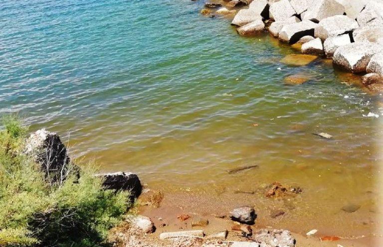 Fioritura algale a Pizzo, Arpacal: «Non è tossica». Ma il mare resta sporco