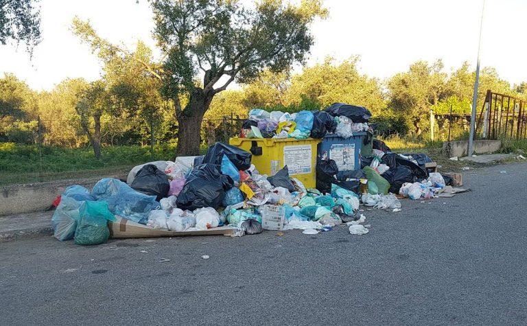 Rifiuti in strada a Vibo, Slai-Cobas: «Aumentare il monte ore per garantire il servizio»