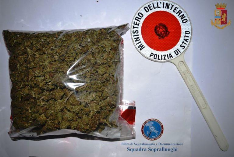 Viaggiava in auto con mezzo chilo di marijuana, un arresto nelle Serre