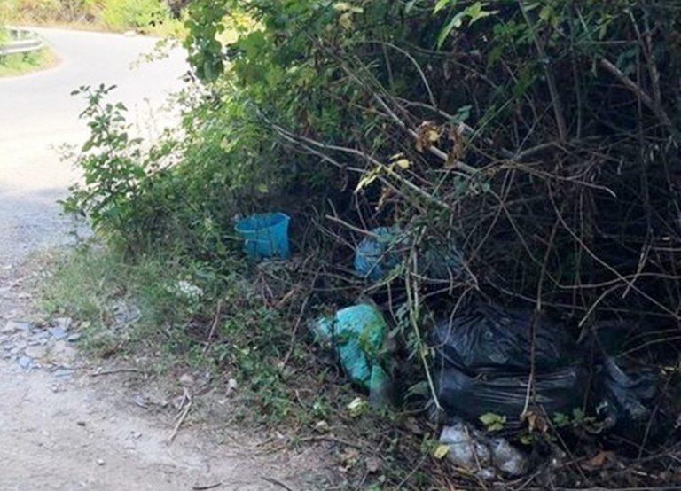 Rifiuti e scempio ambientale lungo la provinciale fra Acquaro e Dinami – Foto