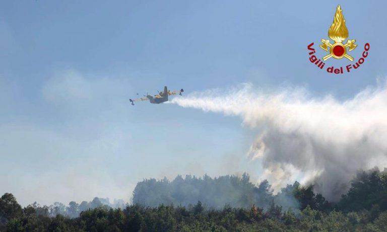 Vasto incendio nel bosco dei Vaioti fra Vazzano e Sant'Onofrio