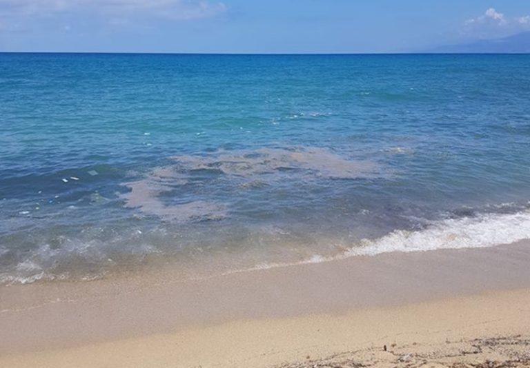 Mare sporco: indagano le Procure di Vibo, Lamezia e Palmi