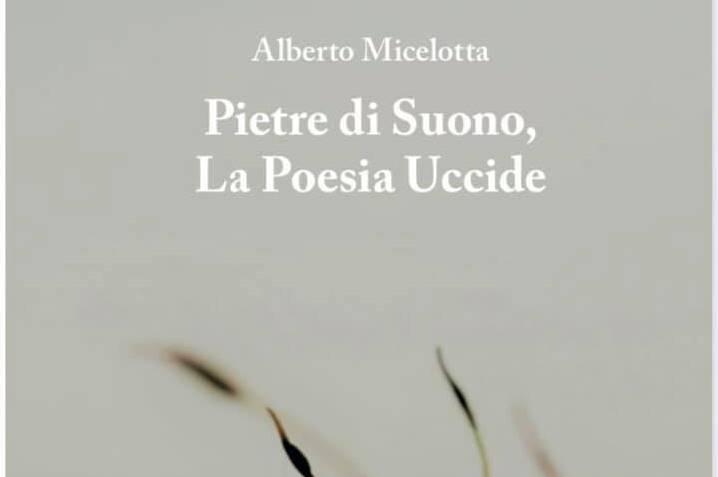 """""""Pietre di suono"""", su Eppela il nuovo libro di Alberto Micelotta"""