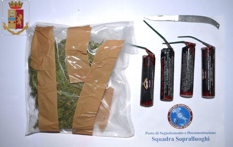 Detenzione di marijuana ai fini di spaccio, un arresto a Serra San Bruno