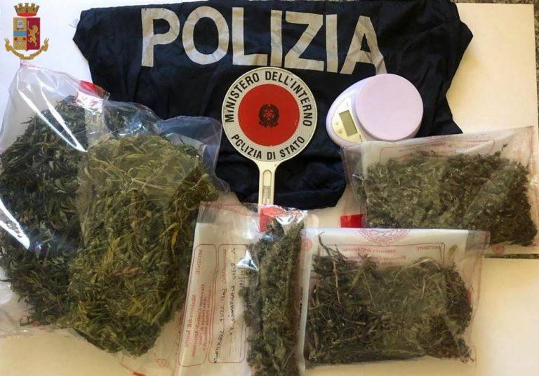 Detenzione e spaccio di stupefacenti, due arresti nel Vibonese