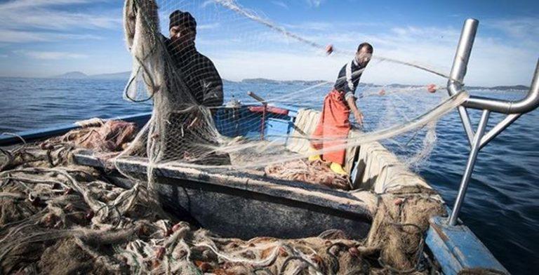 Piccola pesca, arriva il bonus da 950 euro