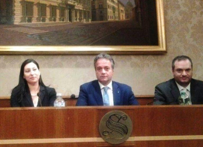 Antimafia: l'on. Tonelli porta il caso di Lia Staropoli all'attenzione della Commissione parlamentare