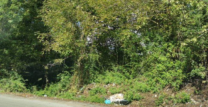 Francica, strade costellate da buche ed erbacce: cresce l'indignazione – Foto
