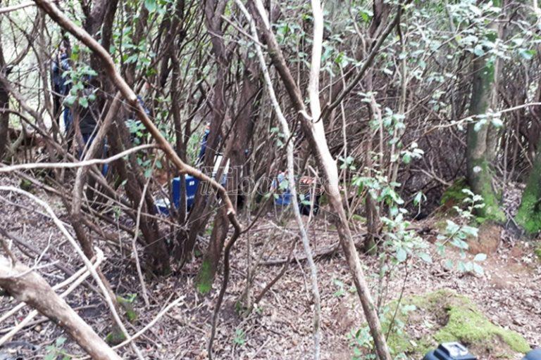 """""""Lupara bianca"""": rinvenuto un cadavere nei boschi delle Preserre vibonesi – Video"""