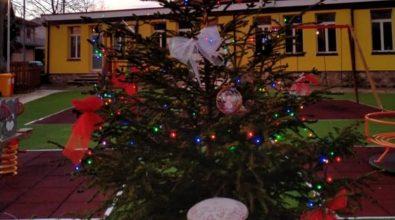 """A Filogaso l'albero di Natale si illumina nel segno della """"stella"""" Matilde"""