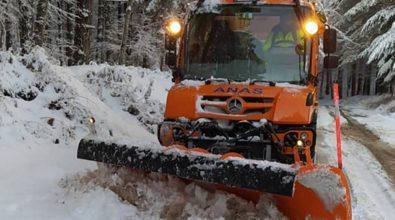 Abbondanti nevicate sulle Serre vibonesi, mezzi spazzaneve in azione