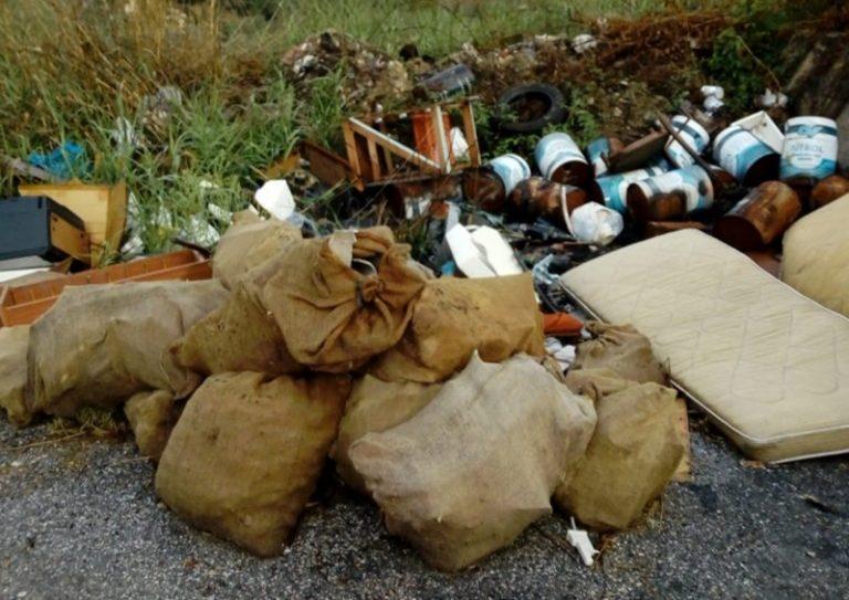 Degrado sulla strada Mileto-Filandari, Pedullà: «In gioco la salute dei cittadini»