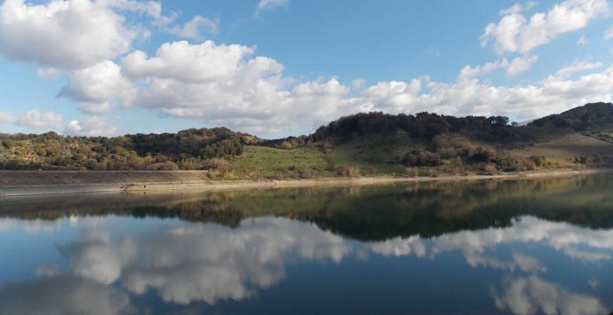 Festa delle oasi Wwf, in Calabria domenica 6 giugno tappa al lago Angitola