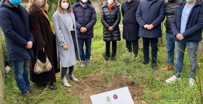 A Piscopio il giardino della memoria in ricordo della vittime del Covid