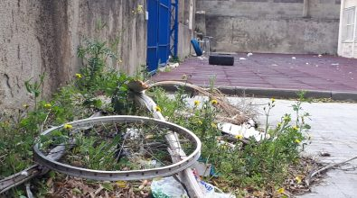Vibo Marina: micro discariche e deiezioni di cani, la zona franca alla scuola De Maria